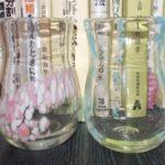 北海道旅行2012 その4